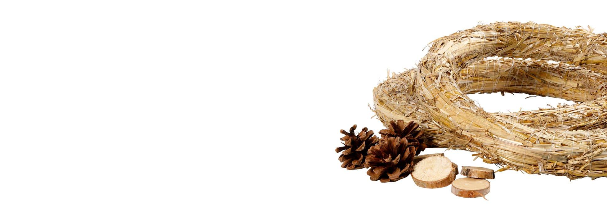 Compositions florales et matériel pour tressage de paniers