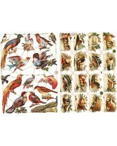 Découpes vintage, oiseaux, 16,5x23,5 cm, 2 flles/ 1 Pq.