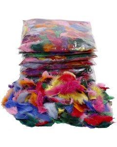 Plumes , dim. 7-8 cm, couleurs assorties, 500 gr/ 1 Pq.