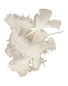 Plumes , dim. 7-8 cm, blanc, 50 gr/ 1 Pq.