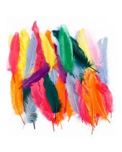 Plumes, L: 12-15 cm, couleurs assorties, 350 pièce/ 1 Pq.