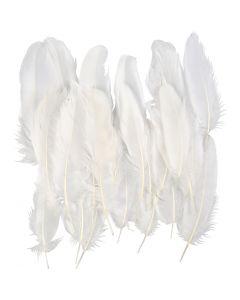 Plumes, blanc, 70 pièce/ 1 sac