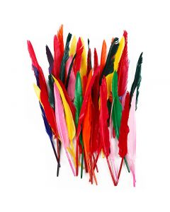 Plumes, L: 29-31 cm, couleurs assorties, 100 pièce/ 1 Pq.