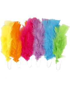 Plumes, L: 11-17 cm, couleurs assorties, 18 boule/ 1 Pq.