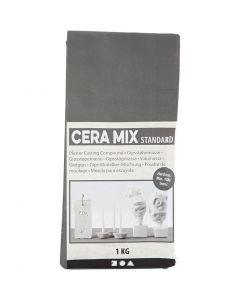 Plâtre de Paris Cera-Mix, gris clair, 1 kg
