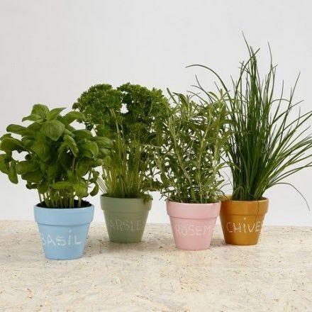 Pots à fleurs décorés pour épices
