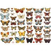 Découpes vintage, papillons, 16,5x23,5 cm, 2 flles/ 1 Pq.
