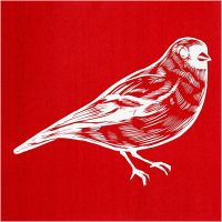 Pochoirs, oiseau, 20x22 cm, 1 flles