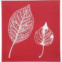 Pochoirs, feuilles, 20x22 cm, 1 flles
