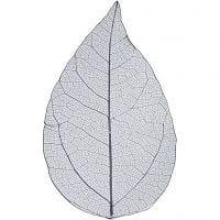 Squelettes de feuilles, L: 6-8 cm, bleu, 20 pièce/ 1 Pq.