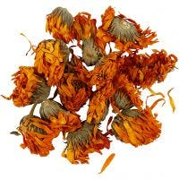 Fleurs séchées, Calendula, d: 1 - 1,5 cm, or, 1 Pq.