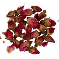 Fleurs séchées, Boutons de rose, L: 1 - 2 cm, d: 0,6 - 1 cm, rose foncé, 1 Pq.