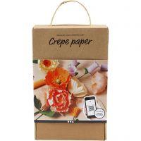 Kit de découverte du papier crépon, 105 gr, couleurs assorties, 1 set
