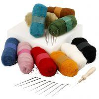 Feutrage à l'aiguille - kit de démarrage, couleurs assorties, 1 set