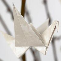 Un oiseau plié dans du papier