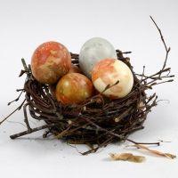 Oeufs de couleur naturelle et peau d'oignons