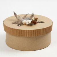 Carton ondulé, plumes et coquillages sur boîte avec couvercle
