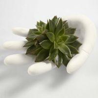 Une main moulée en plâtre dans un gant jetable