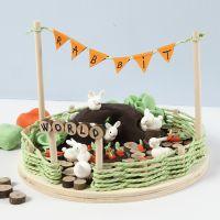 Un Monde Miniature avec des lapins et des carottes en pâte Silk Clay